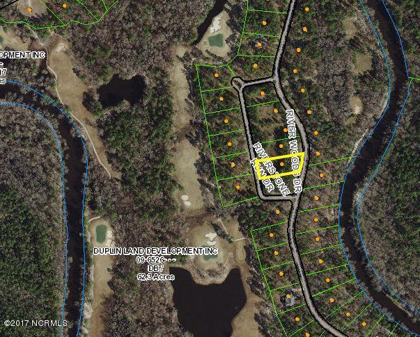 288 River Woods Drive, Wallace, NC 28466 (MLS #100086026) :: Century 21 Sweyer & Associates