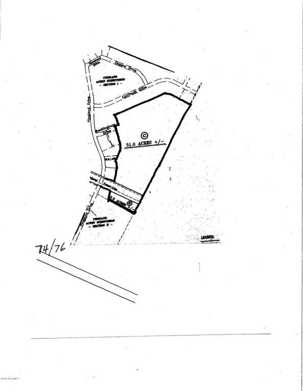 0 Pine Land Road, Riegelwood, NC 28456 (MLS #100086950) :: RE/MAX Essential