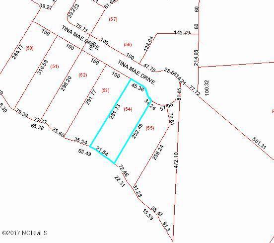 305 Tina Mae Drive, Vanceboro, NC 28586 (MLS #100087811) :: Century 21 Sweyer & Associates