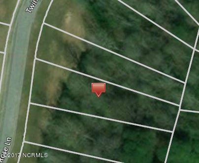 221 Twining Rose Lane, Holly Ridge, NC 28445 (MLS #100089332) :: Century 21 Sweyer & Associates