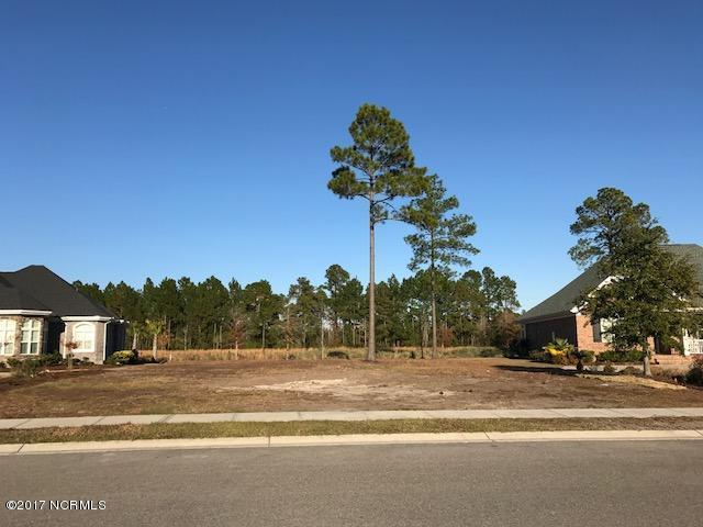 1269 Lillibridge Drive, Leland, NC 28451 (MLS #100091514) :: SC Beach Real Estate