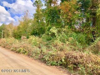 0 Messer Loop Road, Burgaw, NC 28425 (MLS #100092298) :: Century 21 Sweyer & Associates