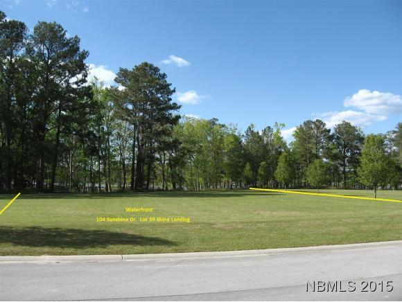 104 Sunshine Drive, Arapahoe, NC 28510 (MLS #100092939) :: The Keith Beatty Team