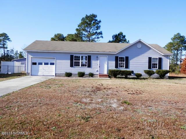 202 Mesquite Lane, Hubert, NC 28539 (MLS #100092975) :: Courtney Carter Homes