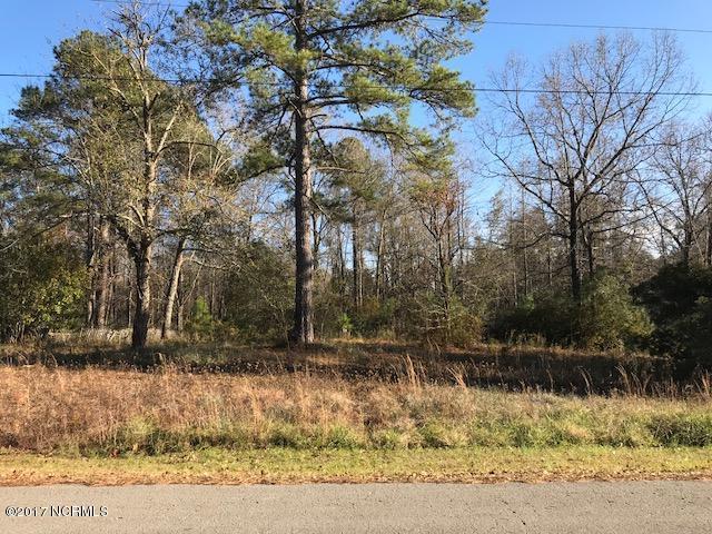 170 Sandy Creek Drive, Leland, NC 28451 (MLS #100093322) :: Coldwell Banker Sea Coast Advantage