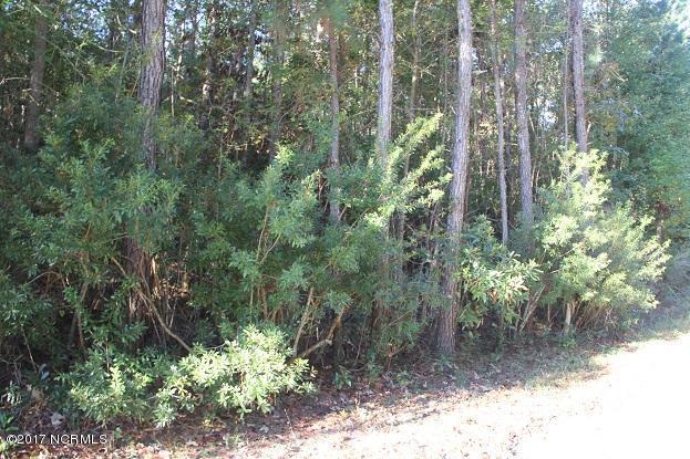 4 Shelter Creek Drive, Burgaw, NC 28425 (MLS #100093437) :: Century 21 Sweyer & Associates