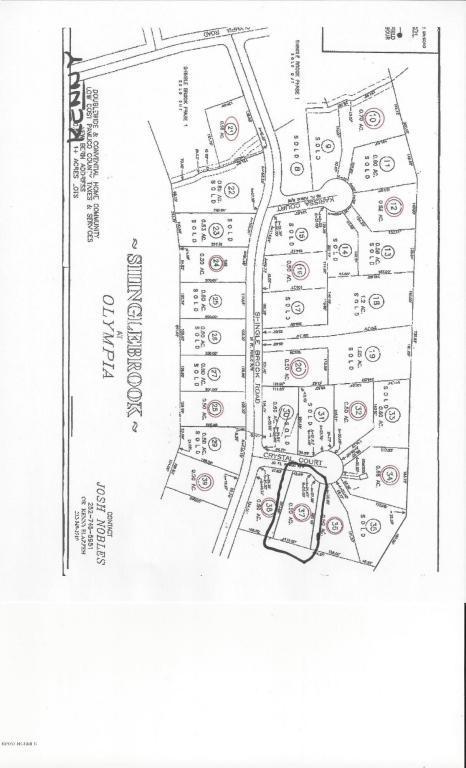 34 Crystal Court, New Bern, NC 28560 (MLS #100094084) :: The Keith Beatty Team