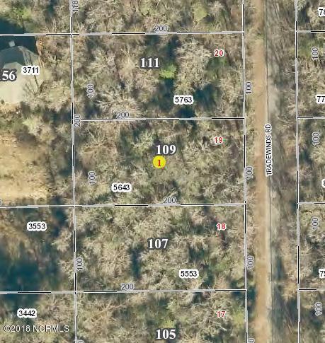 109 Tradewinds Road, Newport, NC 28570 (MLS #100095931) :: Harrison Dorn Realty