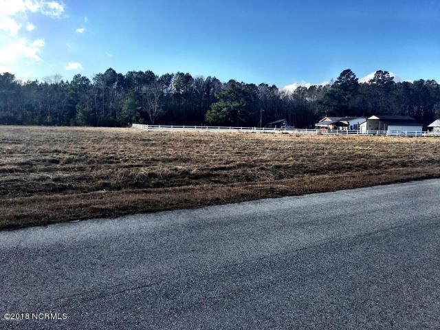 303 Belgian Court, Richlands, NC 28574 (MLS #100096755) :: The Keith Beatty Team