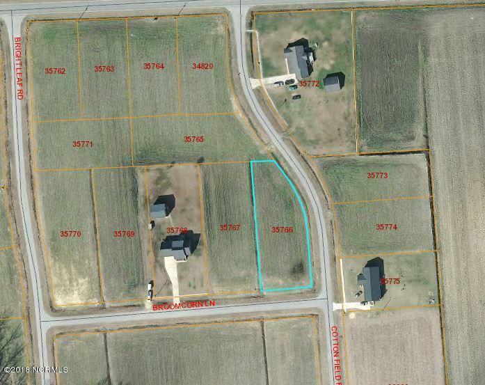 6 Cotton Field Road - Photo 1
