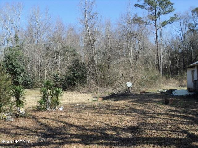 0 Persimmon Road, Rowland, NC 28383 (MLS #100099461) :: Courtney Carter Homes