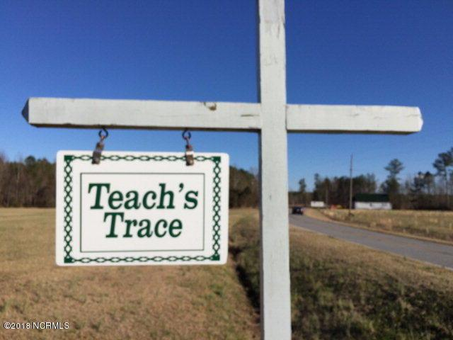 25 Teachs Trace Lane, Bath, NC 27808 (MLS #100100398) :: Harrison Dorn Realty