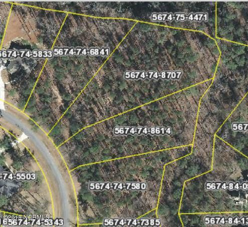 256 Choptank Drive, Chocowinity, NC 27817 (MLS #100101052) :: The Pistol Tingen Team- Berkshire Hathaway HomeServices Prime Properties