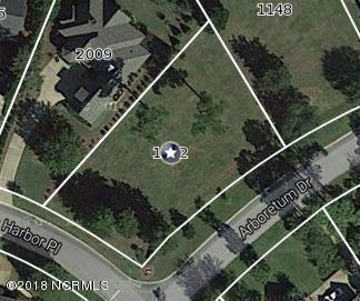 1152 Arboretum Drive, Wilmington, NC 28405 (MLS #100102159) :: The Pistol Tingen Team- Berkshire Hathaway HomeServices Prime Properties