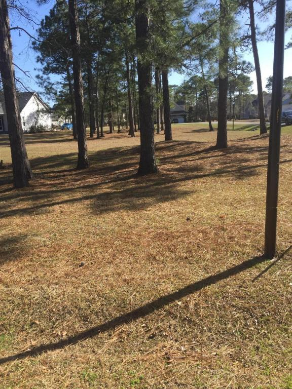 2373 St James Drive SE, Southport, NC 28461 (MLS #100102379) :: RE/MAX Essential