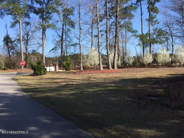 16 Plantation Drive SW, Ocean Isle Beach, NC 28469 (MLS #100102523) :: RE/MAX Elite Realty Group