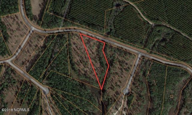 Lot 32 Bailey Pointe Drive, Belhaven, NC 27810 (MLS #100102597) :: Century 21 Sweyer & Associates