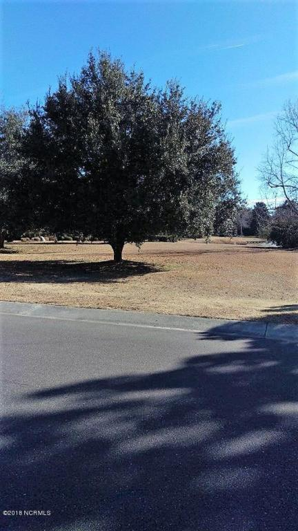 1511 Landalee Drive, Wilmington, NC 28405 (MLS #100102655) :: The Keith Beatty Team