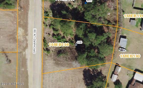 468 Orchard Lane, Bolivia, NC 28422 (MLS #100103454) :: Century 21 Sweyer & Associates
