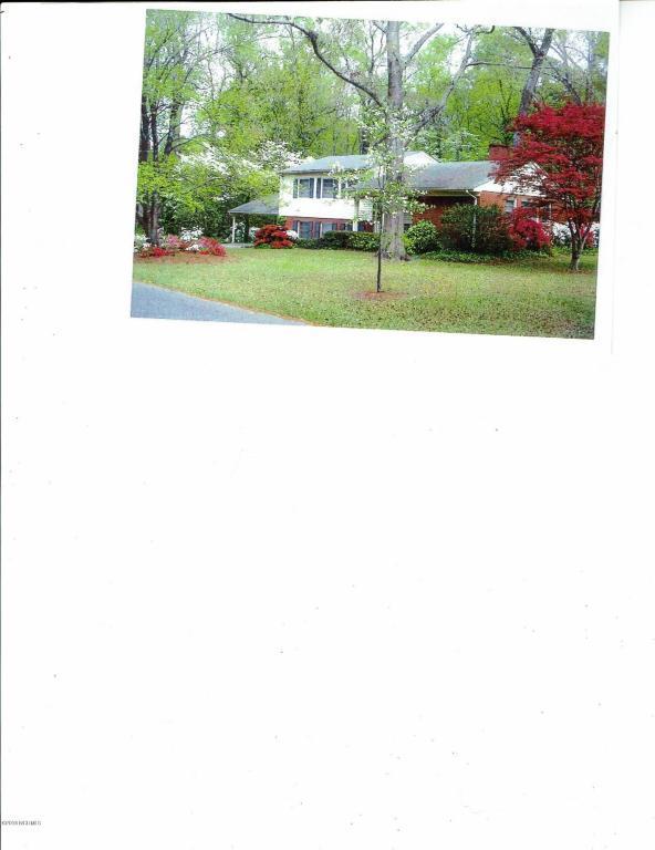 134 E Longmeadow Road, Greenville, NC 27858 (MLS #100104125) :: RE/MAX Essential