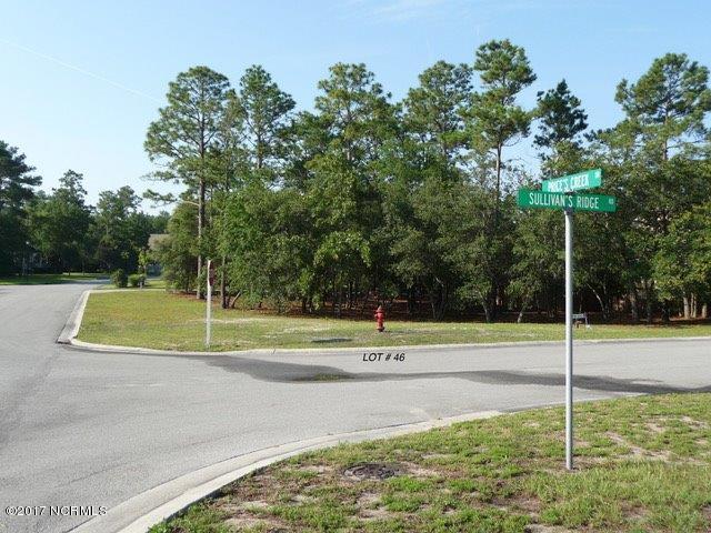 6099 Sullivan Ridge Road, Southport, NC 28461 (MLS #100104613) :: The Keith Beatty Team