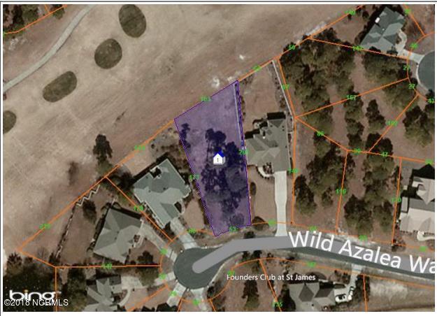 3150 Wild Azalea Way SE, Southport, NC 28461 (MLS #100105364) :: Courtney Carter Homes