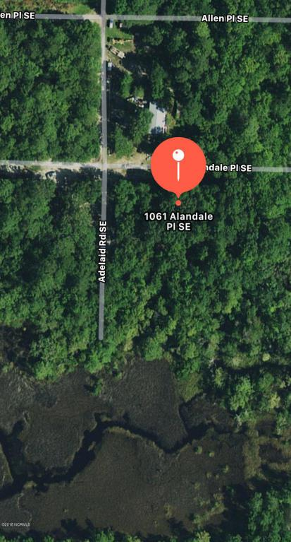 1061 Alandale Place SE, Bolivia, NC 28422 (MLS #100105536) :: Century 21 Sweyer & Associates
