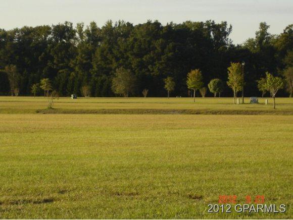 3441 Autumn Leaves Drive, Grimesland, NC 27837 (MLS #100107033) :: The Keith Beatty Team