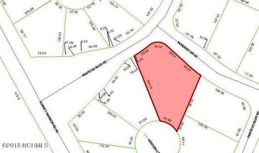 2503 Sendero Drive SE, Bolivia, NC 28422 (MLS #100107855) :: Berkshire Hathaway HomeServices Prime Properties