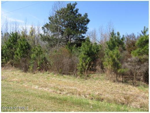 5444 Weyerhaeuser Road, Ayden, NC 28513 (MLS #100109518) :: The Pistol Tingen Team- Berkshire Hathaway HomeServices Prime Properties