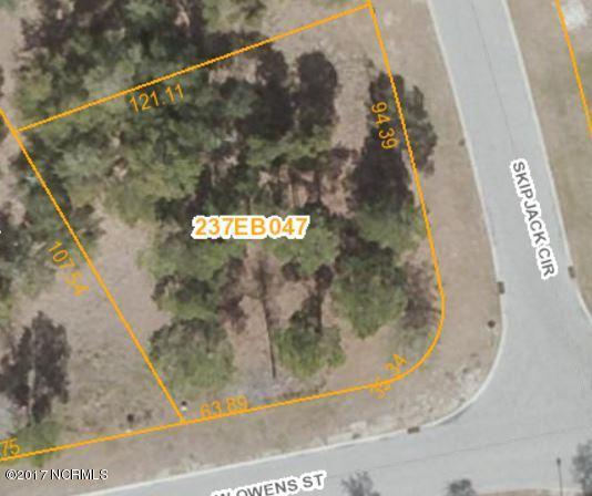 788 Skipjack Circle, Southport, NC 28461 (MLS #100109970) :: Terri Alphin Smith & Co.