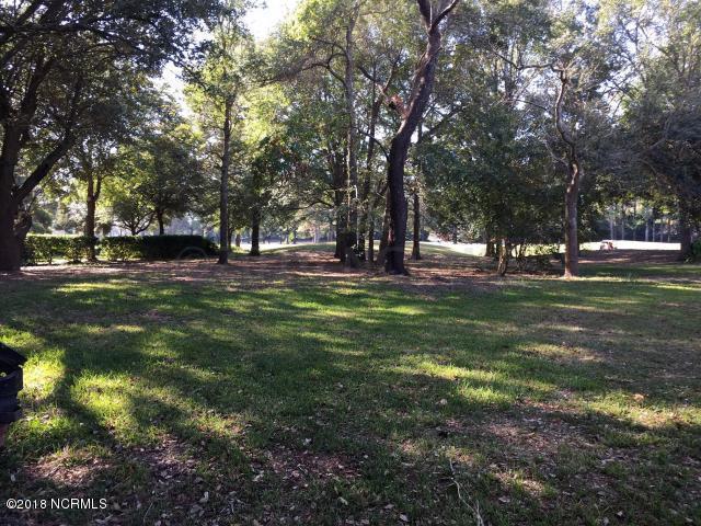 1516 Jupiter Hills Circle, Wilmington, NC 28411 (MLS #100112995) :: The Keith Beatty Team