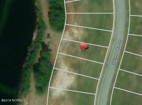 188 Spicer Lake Drive, Holly Ridge, NC 28445 (MLS #100116539) :: Courtney Carter Homes
