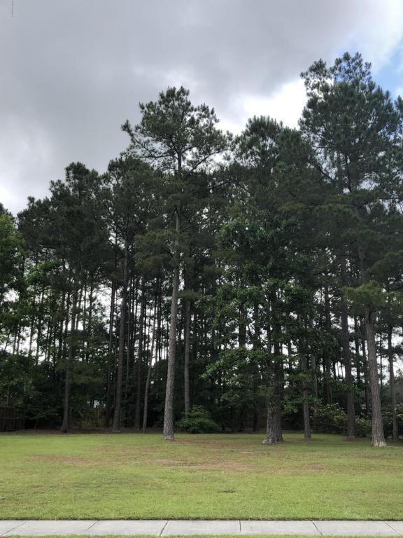 1149 Grandiflora Drive, Leland, NC 28451 (MLS #100117038) :: The Keith Beatty Team