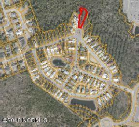 1000 Breedon Court, Wilmington, NC 28405 (MLS #100118113) :: David Cummings Real Estate Team