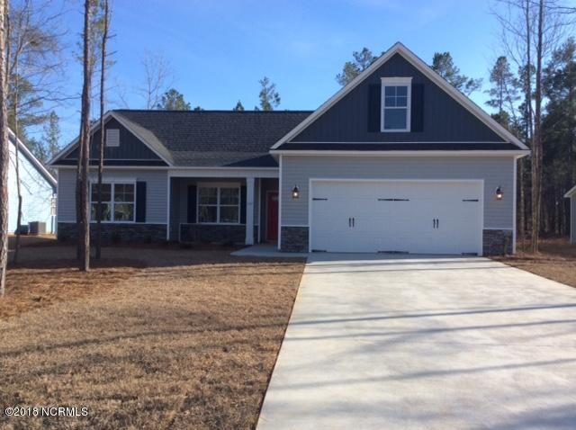 103 Maxwell Drive, Rocky Point, NC 28457 (MLS #100118147) :: RE/MAX Essential
