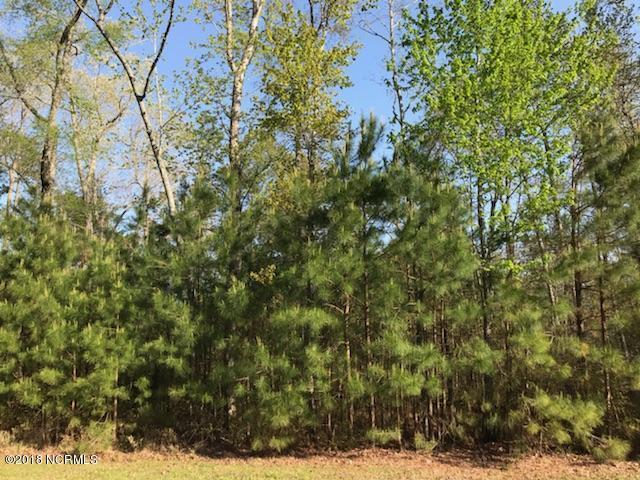 Lot 20 Ashton Drive, Bath, NC 27808 (MLS #100118449) :: Courtney Carter Homes