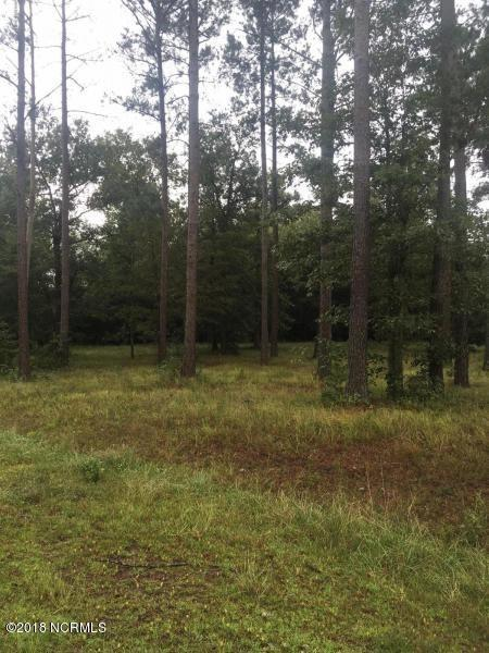 Lot 20 E Waverly Drive, Burgaw, NC 28425 (MLS #100118775) :: RE/MAX Elite Realty Group