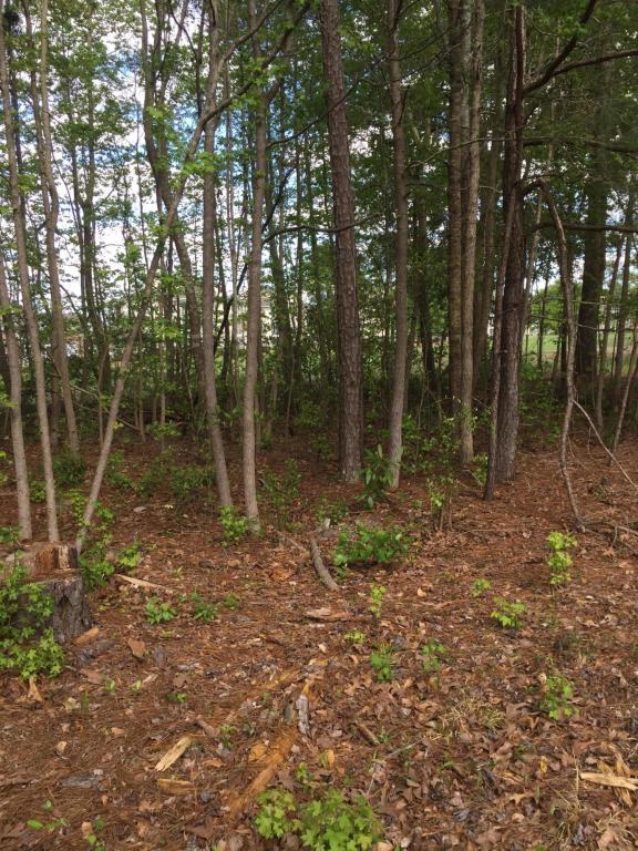 1513 Grandiflora Drive, Leland, NC 28451 (MLS #100119041) :: Century 21 Sweyer & Associates