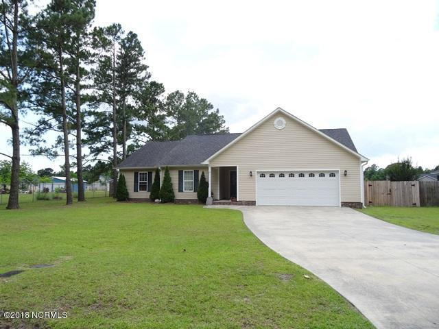159 Riggs, Hubert, NC 28539 (MLS #100120123) :: RE/MAX Essential