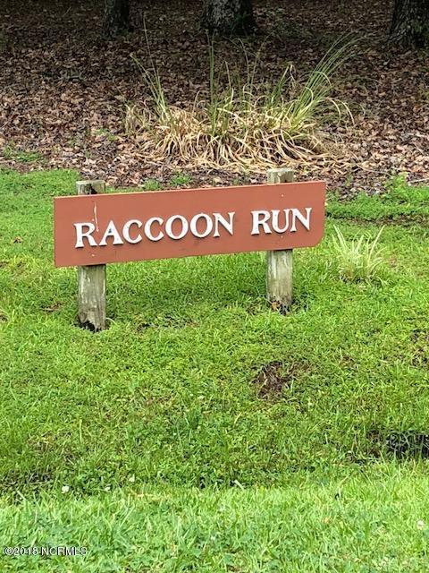 19 Raccoon Run, Oriental, NC 28571 (MLS #100122271) :: Coldwell Banker Sea Coast Advantage