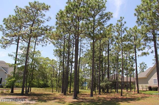4023 Covedale Lane, Southport, NC 28461 (MLS #100122369) :: Coldwell Banker Sea Coast Advantage