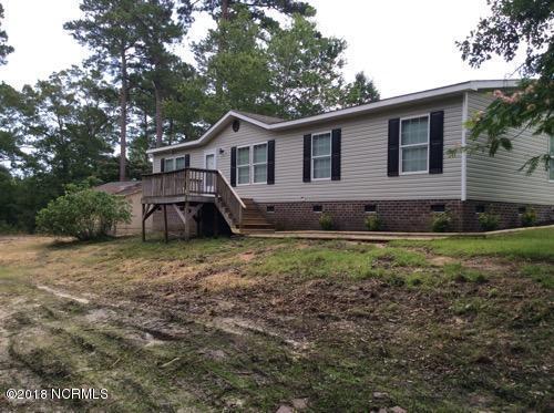127 Youpon Drive, Hubert, NC 28539 (MLS #100123448) :: David Cummings Real Estate Team