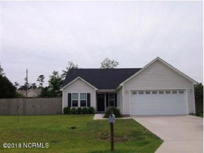 219 Derby Downs Drive, Sneads Ferry, NC 28460 (MLS #100123744) :: The Keith Beatty Team