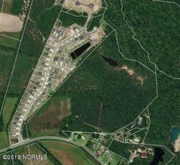 455 Mill Creek Rd Tr #3, Hampstead, NC 28443 (MLS #100123920) :: RE/MAX Essential