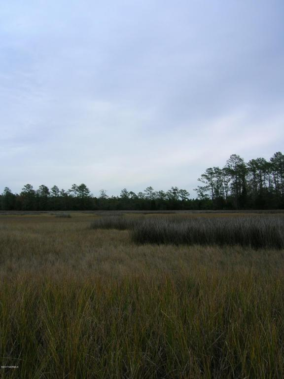 205 Hardesty Farm Road, Newport, NC 28570 (MLS #100123991) :: Century 21 Sweyer & Associates