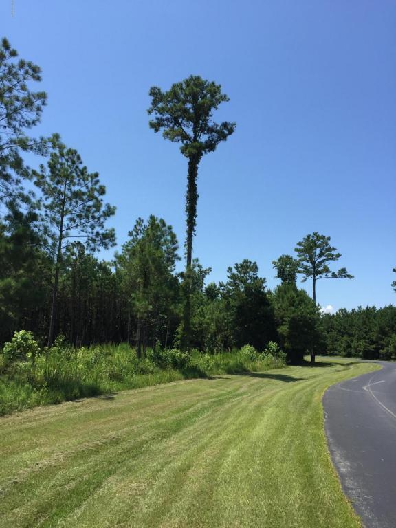 264 Garbacon Drive, Beaufort, NC 28516 (MLS #100124041) :: Berkshire Hathaway HomeServices Prime Properties
