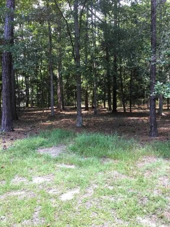 Lot 65 Fairway Crest Drive, Shallotte, NC 28470 (MLS #100124092) :: Harrison Dorn Realty