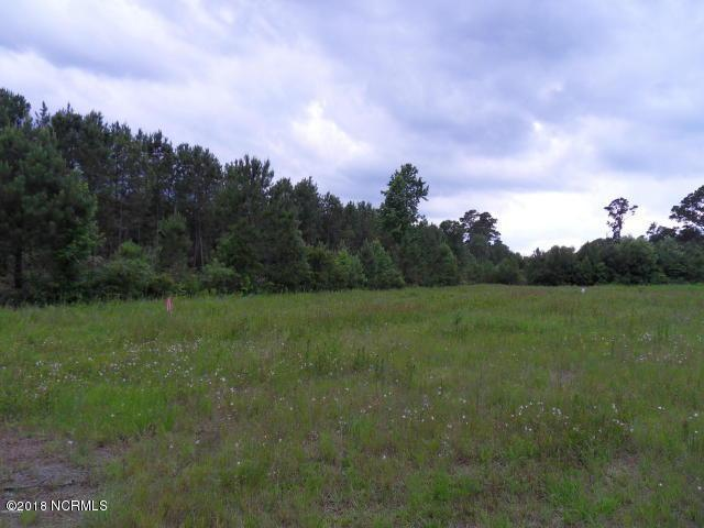 1050 Old Mill Road - Photo 1