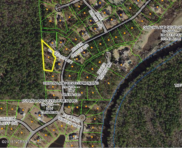 109 Camellia Court, Wallace, NC 28466 (MLS #100125933) :: RE/MAX Essential